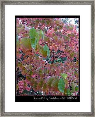 Autumn Pink Poster Framed Print by Carol Groenen
