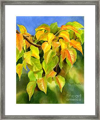 Autumn Plum Leaves Framed Print