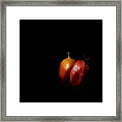 Autumn Pomegranate Framed Print