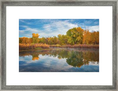 Autumn Pond Framed Print