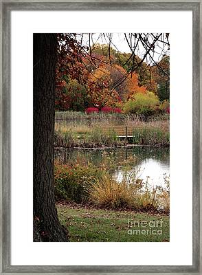 Autumn Pond In Maryland Framed Print by William Kuta
