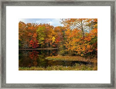 Autumn Pond Reflections Framed Print