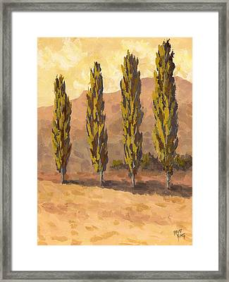 Autumn Poplars Framed Print