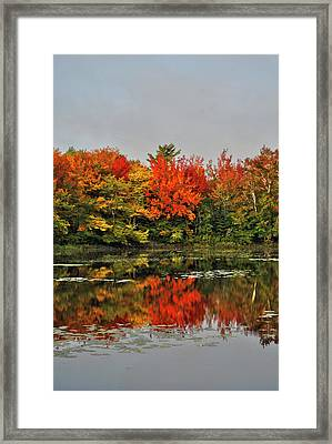 Framed Print featuring the photograph Autumn Portrait by Kathleen Sartoris