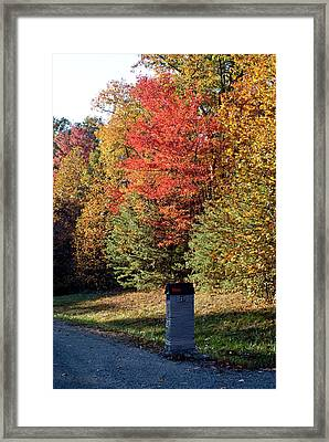 Autumn Post Framed Print by Douglas Barnett
