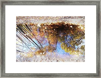 Autumn Print Framed Print by Mircea Costina Photography