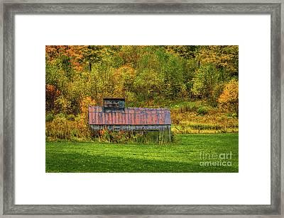 Autumn Rain 3 Framed Print