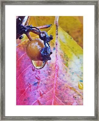 Autumn Rain Framed Print
