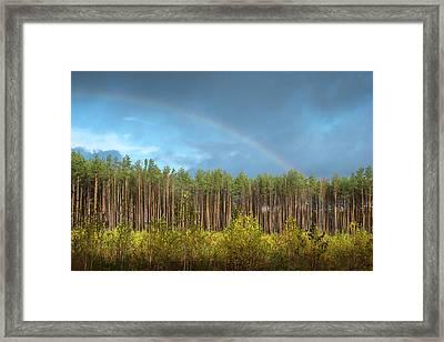 Autumn Rainbow. Sunychne, 2016. Framed Print