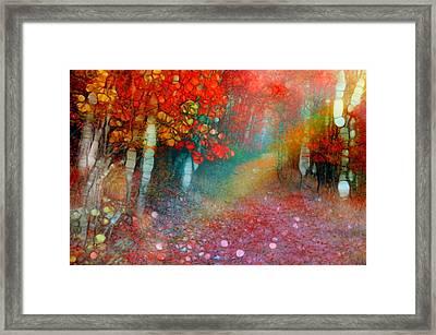 Autumn Rainbow Framed Print