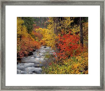 Autumn Rapids Framed Print by Leland D Howard