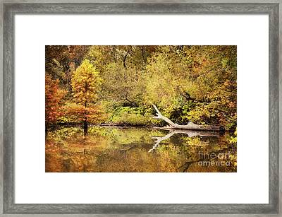Autumn Reflection Framed Print by Cheryl Davis