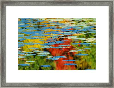 Framed Print featuring the photograph Autumn Lily Pads by Diana Angstadt