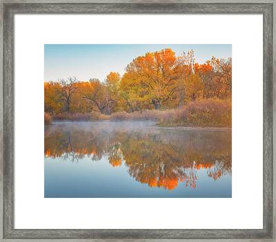 Autumn Reflections Framed Print by Darren White