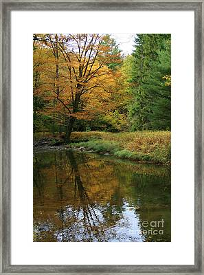 Autumn Reflections Framed Print by Debra Straub