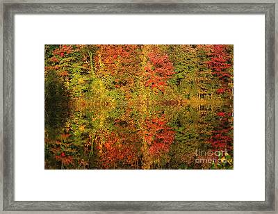 Framed Print featuring the photograph Autumn Reflections In A Pond by Smilin Eyes  Treasures