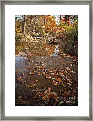 Autumn Reflections Framed Print by Iris Greenwell