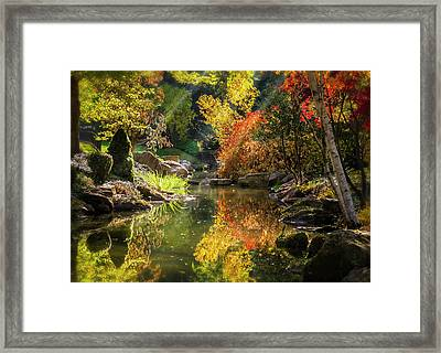 Autumn Reflections Framed Print