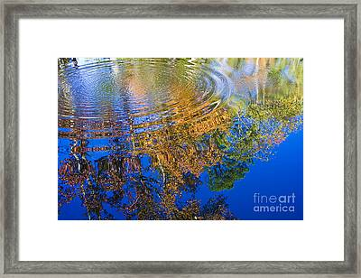 Autumn Reflections Framed Print by Tim Hightower
