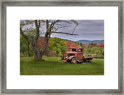 Autumn Relic Framed Print