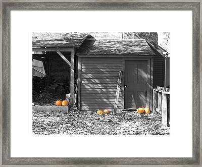 Autumn Rest Framed Print