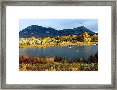 Autumn Rest Stop For Canadian Geese Framed Print