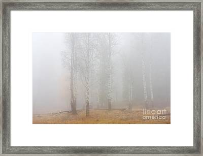 Autumn Reveals Framed Print by Mike  Dawson