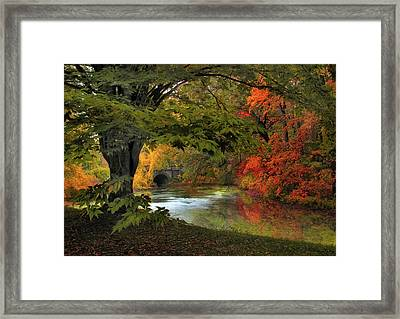 Framed Print featuring the photograph Autumn Reverie by Jessica Jenney