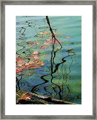 Autumn Ripples 9 Framed Print by Todd Sherlock