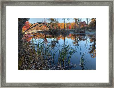 Autumn River 2015 Framed Print by Bill Wakeley