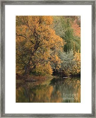 Autumn Riverbank Framed Print