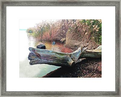 Framed Print featuring the photograph Autumn Riverside by Roger Bester