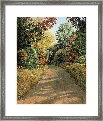 Autumn Road Framed Print
