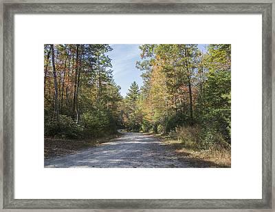 Autumn Road Framed Print by Ricky Dean