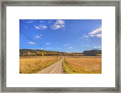 Autumn Road Framed Print by Veikko Suikkanen
