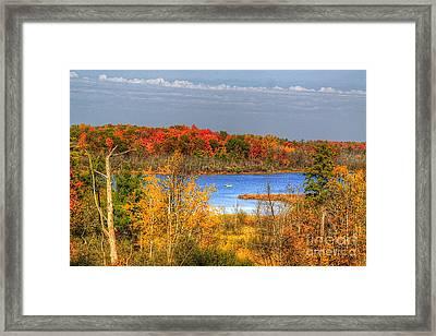 Autumn  Framed Print by Robert Pearson