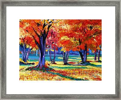 Autumn Row Framed Print