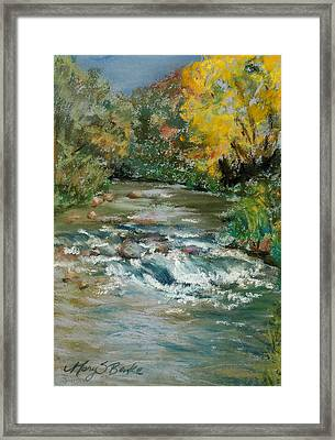Autumn Rush Framed Print