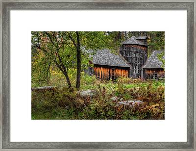 Autumn Rustic 2016 Framed Print by Bill Wakeley