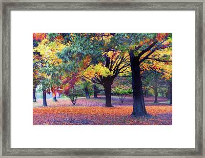 Autumn Symphony Framed Print by Jessica Jenney