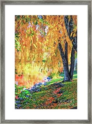 Framed Print featuring the photograph Autumn Scenery At The Virginia Tech Duck Pond by Kerri Farley