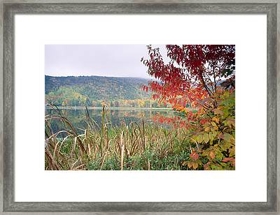 Autumn Scenic Acadia National Park Maine Framed Print by George Oze
