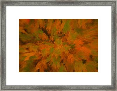 Autumn Scramble Framed Print by Dan Sproul