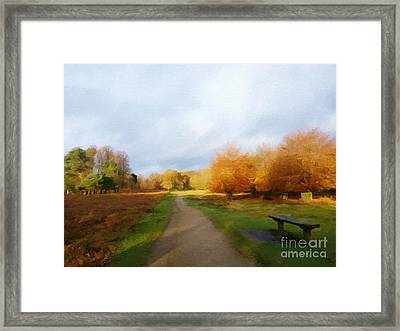 Autumn Seat Framed Print