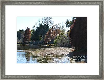 Framed Print featuring the photograph Autumn Serenity by Carol  Bradley