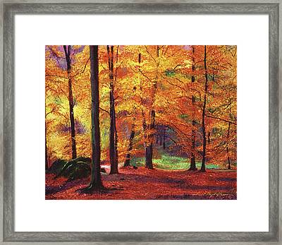 Autumn Serenity Framed Print by David Lloyd Glover