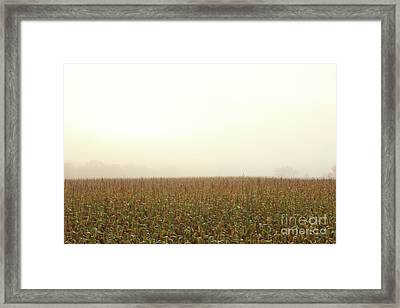 Autumn Serenity Framed Print by Inspired Arts