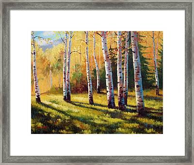 Autumn Shade Framed Print by David G Paul