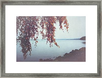Framed Print featuring the photograph Autumn Shore by Ari Salmela