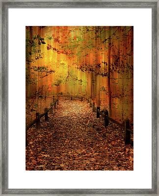 Framed Print featuring the photograph Autumn Silkscreen by Jessica Jenney